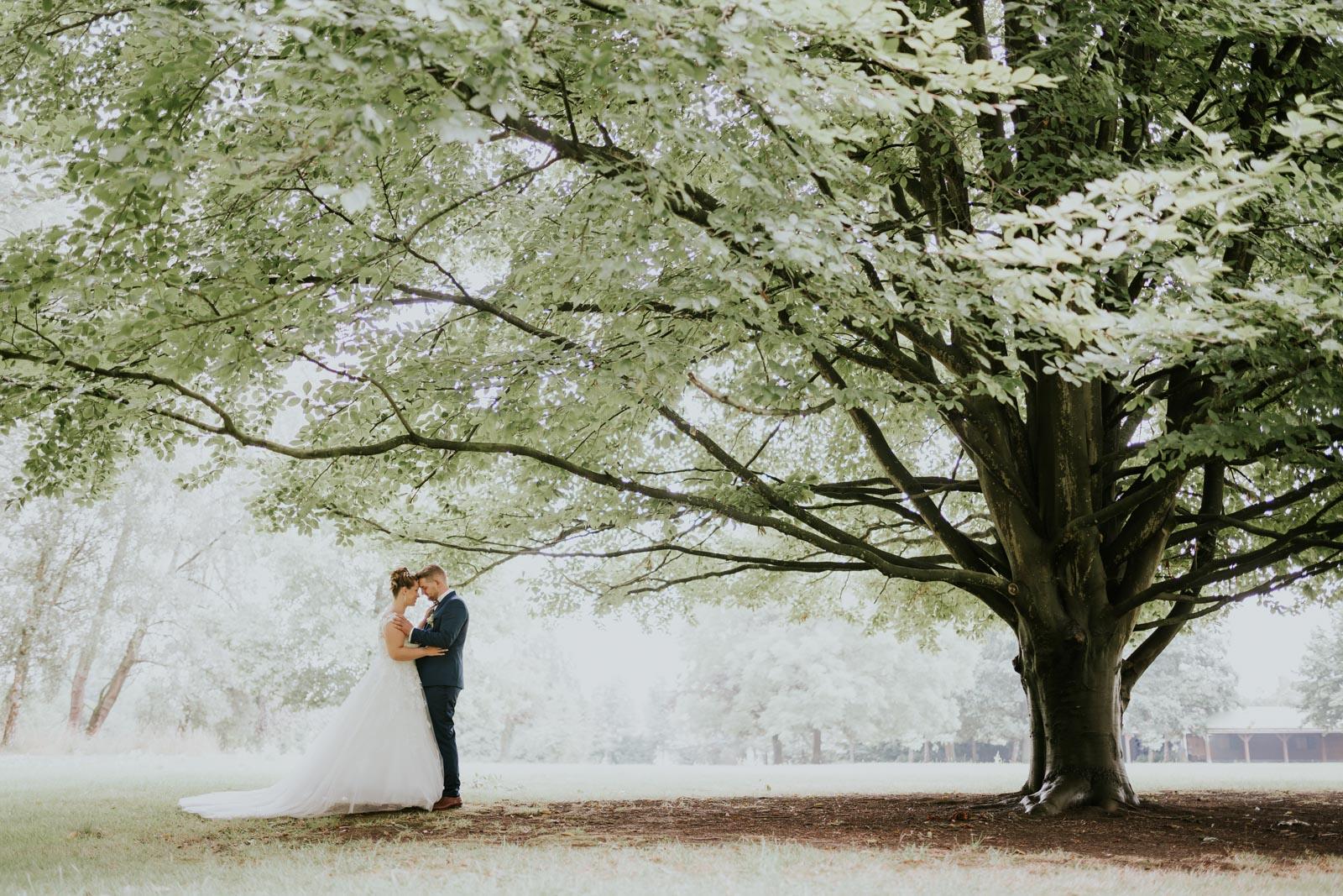 Sous un arbre…